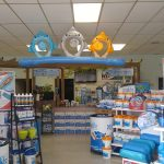 Pool Stores Near Me: Find the Best Pool Suppliers Near You (2018)
