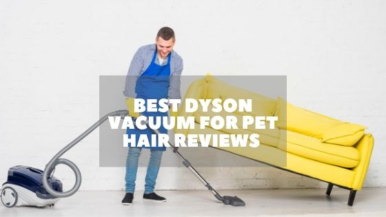 Dyson Vacuum for Pet Hair