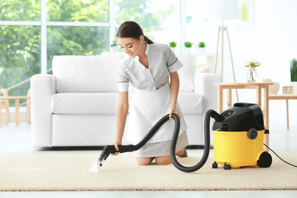 Multi-Purpose Steam Cleaners