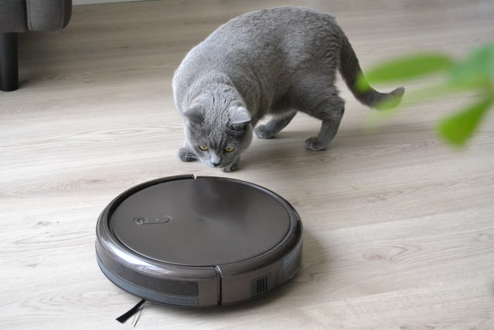 Bobsweep Pethair Robotic Vacuum Cleaner And Mop 2019 Reviews
