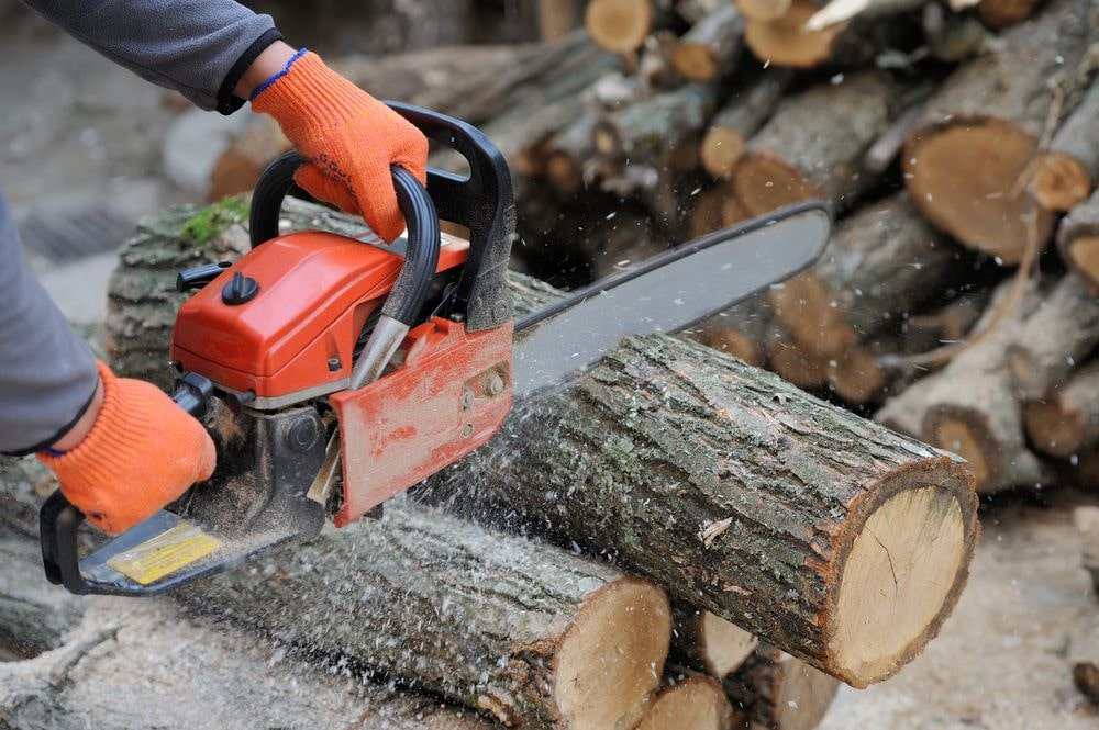 Budget Chainsaws Under $200