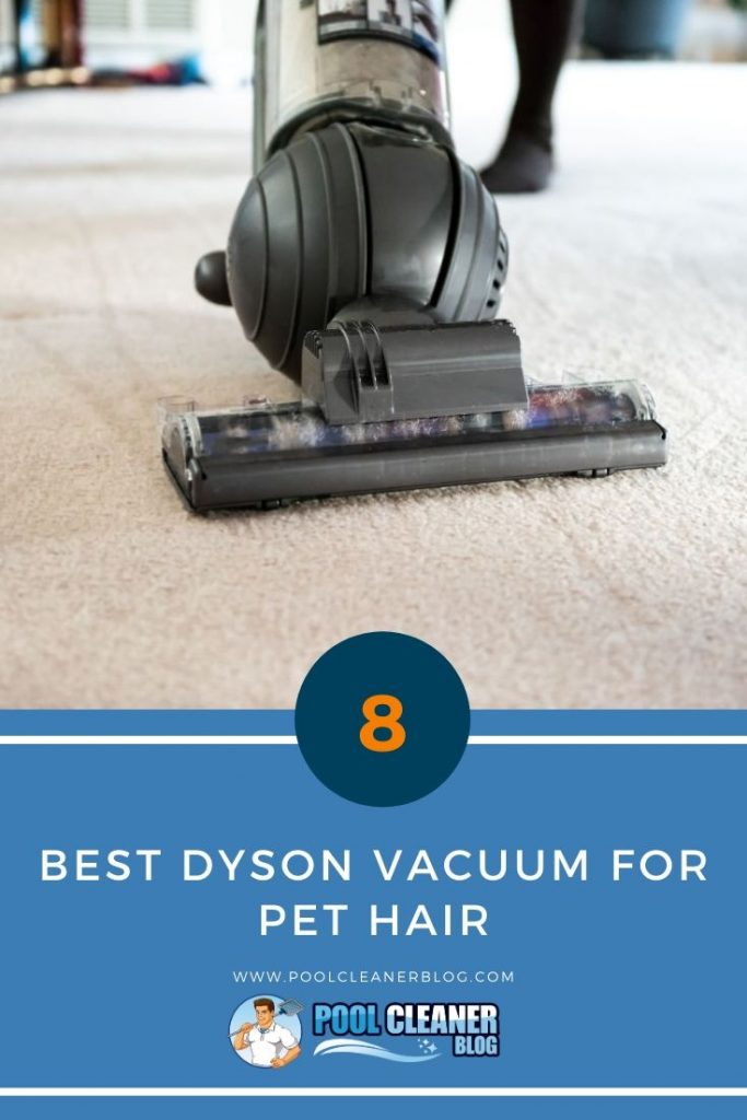 Best Dyson Vacuum for Pet Hair