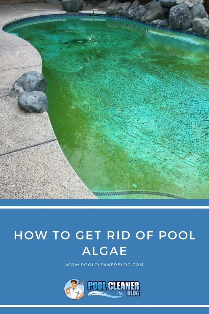How to Get Rid of Pool Algae